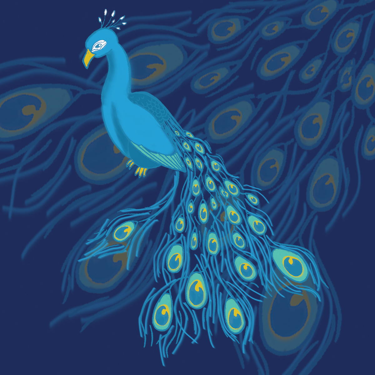 peacock feathers design
